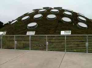 One of the CAS roof-top garden domes.