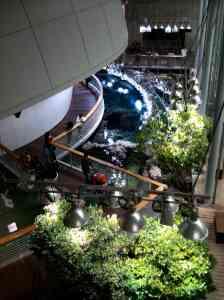 Morrison planetarium dome